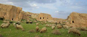 Дара: застывшее эхо ранней Византии в 30 км от старого Мардина