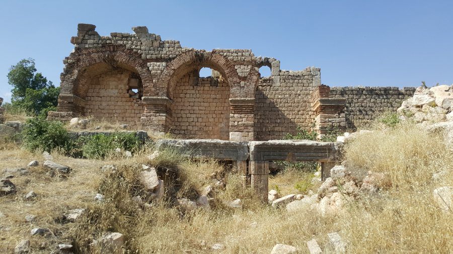 Ruins of the Mor Sabo cathedral